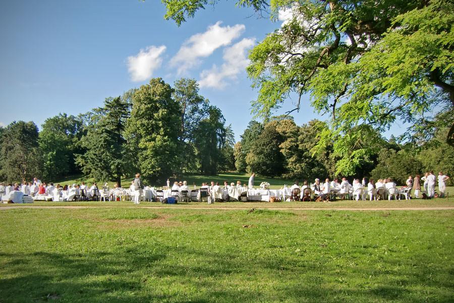 2019 07 04 weisses dinner im gruenen park©apmarketing | Inselzeitung Rügen