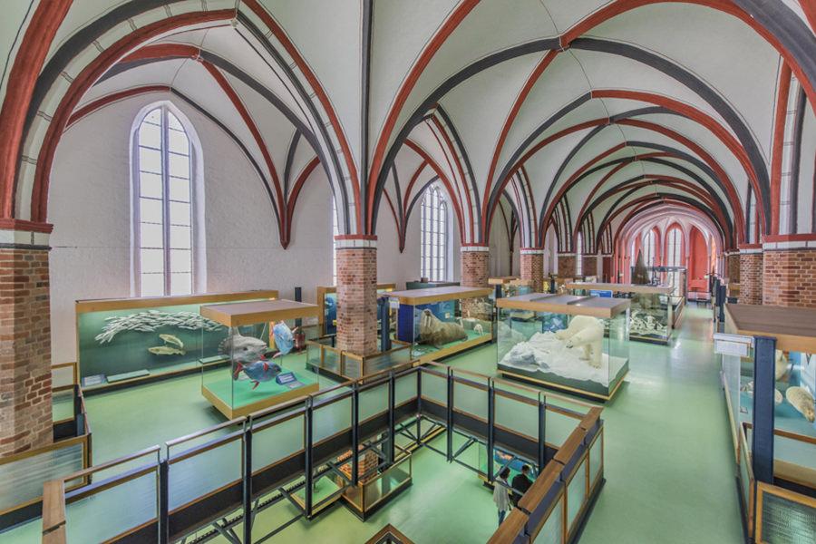 Katharinenhalle jm schlorke inselzeitung | Inselzeitung Rügen