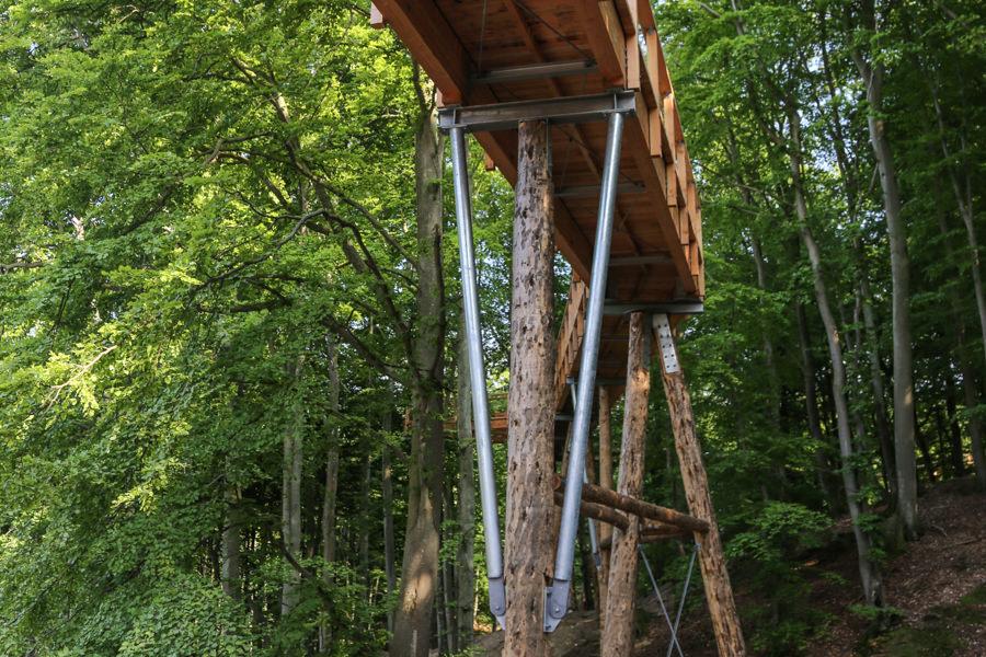 Natur erkunden am Baumwipfelpfad inselzeitung | Inselzeitung Rügen