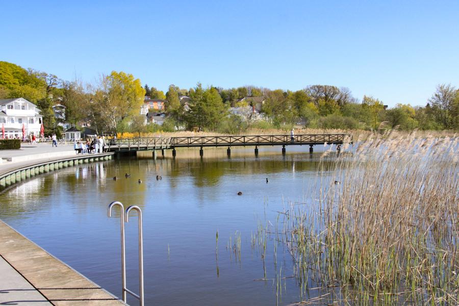 Seen Binz Schmachter See inselzeitung | Inselzeitung Rügen