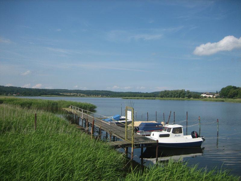 Seen Neuensiener Selliner See inselezeitung | Inselzeitung Rügen