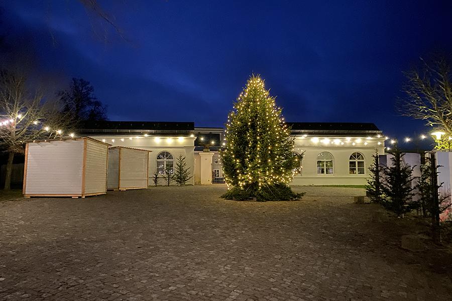 Weihnachtsmarkt Putbus inselzeitung   Inselzeitung Rügen